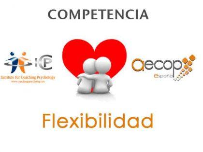 """""""Competencia FLEXIBILIDAD de AECOP y Modelo ICP 5+4=9"""" E. Menendez y M. Esquivel"""